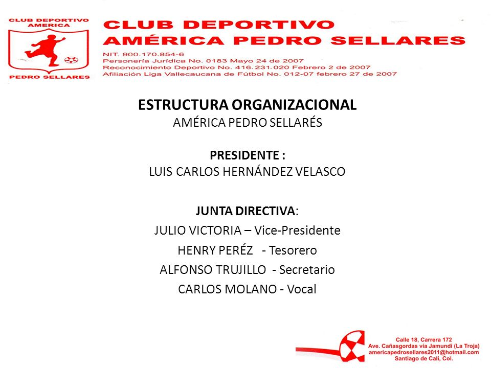 ESTRUCTURA ORGANIZACIONAL AMÉRICA PEDRO SELLARÉS PRESIDENTE : LUIS CARLOS HERNÁNDEZ VELASCO