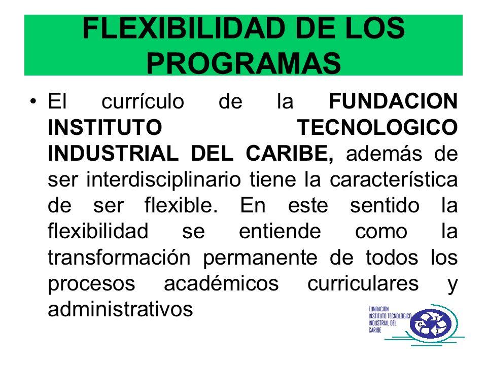 FLEXIBILIDAD DE LOS PROGRAMAS