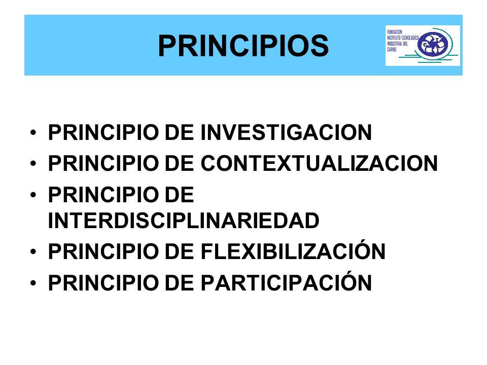 PRINCIPIOS PRINCIPIO DE INVESTIGACION PRINCIPIO DE CONTEXTUALIZACION