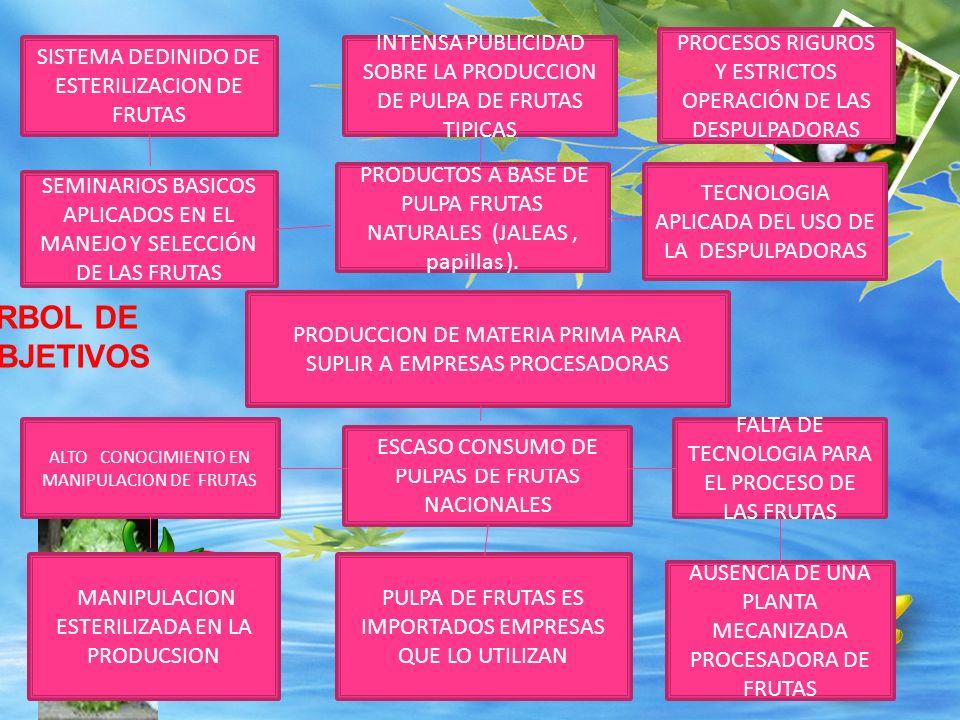 PROCESOS RIGUROS Y ESTRICTOS OPERACIÓN DE LAS DESPULPADORAS