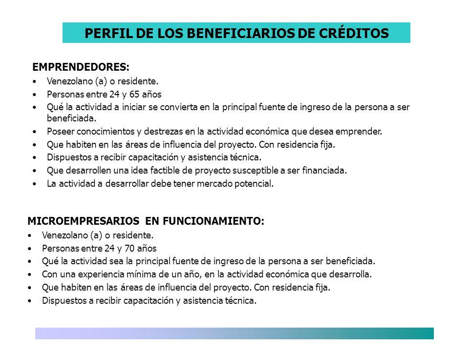 PERFIL DE LOS BENEFICIARIOS DE CRÉDITOS