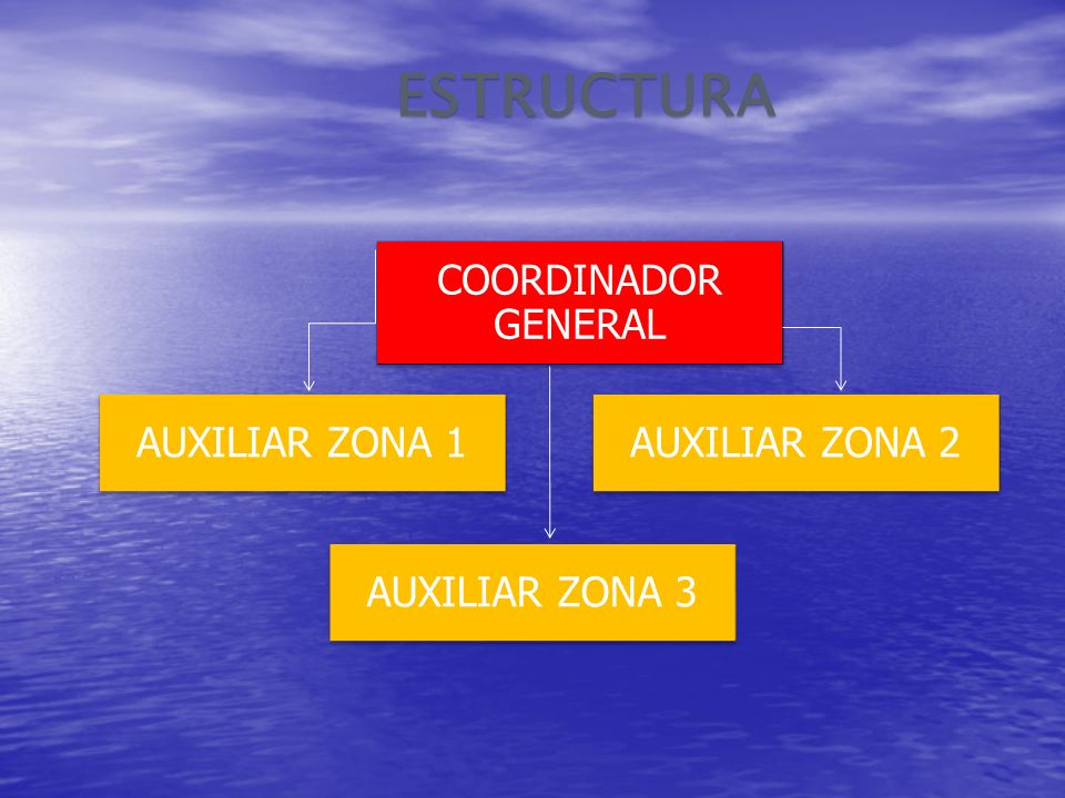 ESTRUCTURA COORDINADOR GENERAL AUXILIAR ZONA 1 AUXILIAR ZONA 2