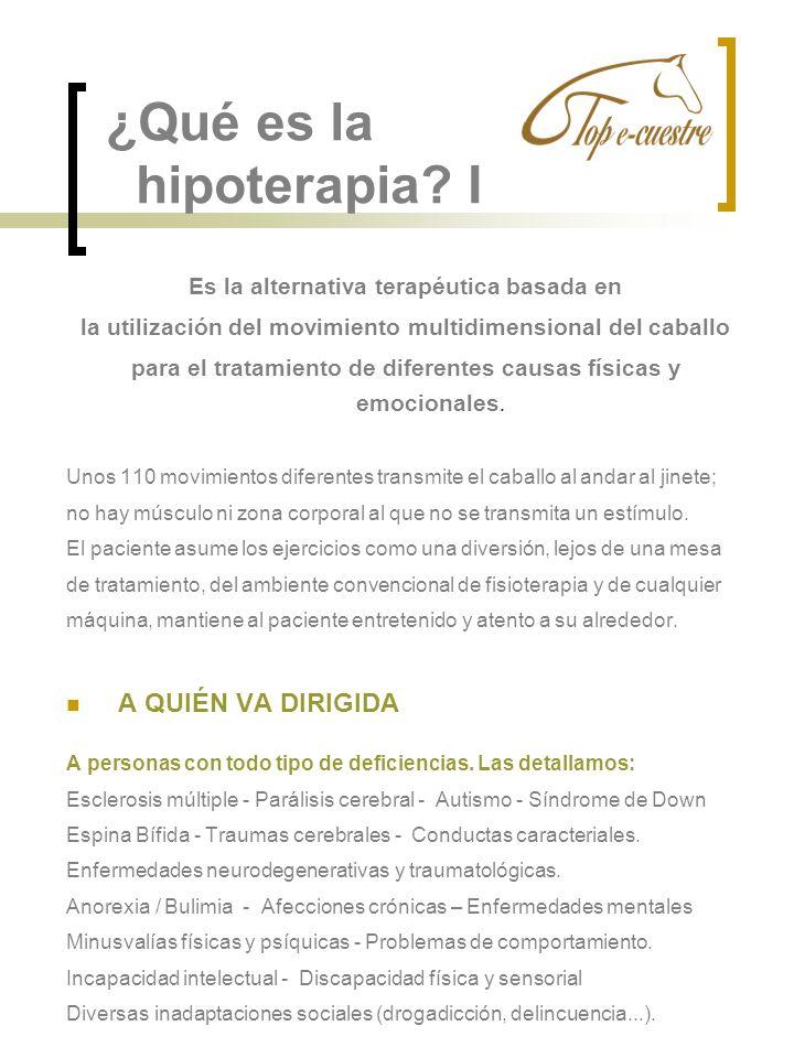¿Qué es la hipoterapia I