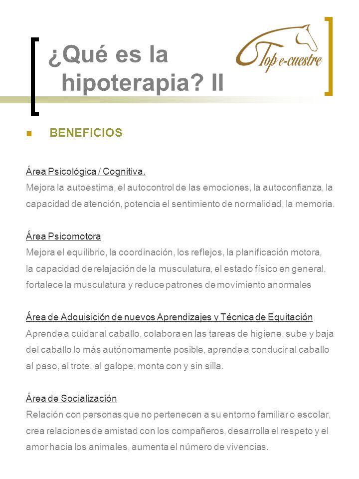 ¿Qué es la hipoterapia II