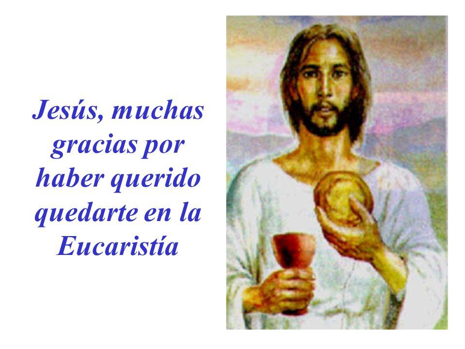Jesús, muchas gracias por haber querido quedarte en la Eucaristía