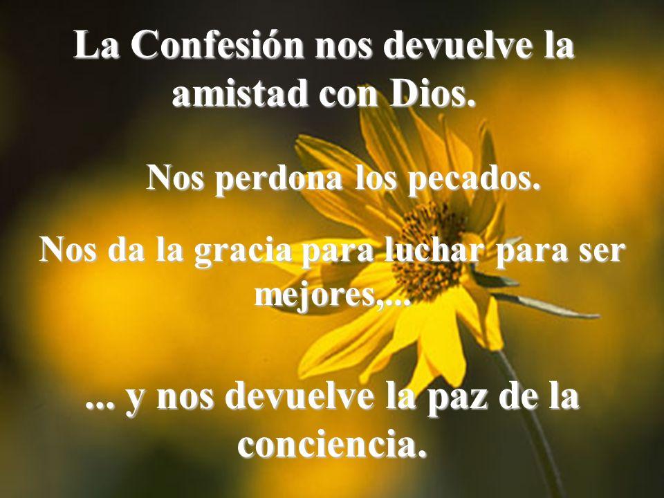 La Confesión nos devuelve la amistad con Dios.