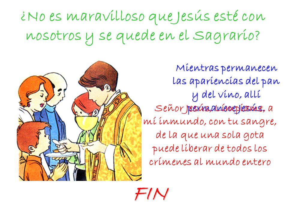 ¿No es maravilloso que Jesús esté con nosotros y se quede en el Sagrario