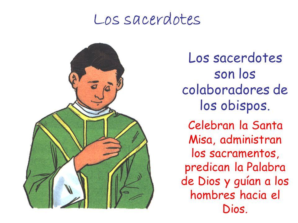 Los sacerdotes son los colaboradores de los obispos.