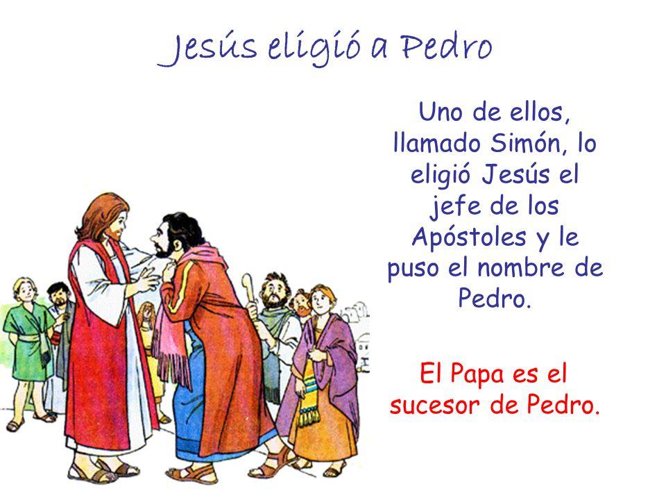 El Papa es el sucesor de Pedro.