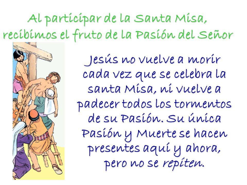 Al participar de la Santa Misa, recibimos el fruto de la Pasión del Señor