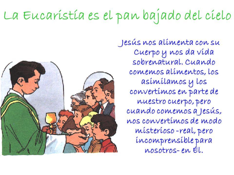 La Eucaristía es el pan bajado del cielo