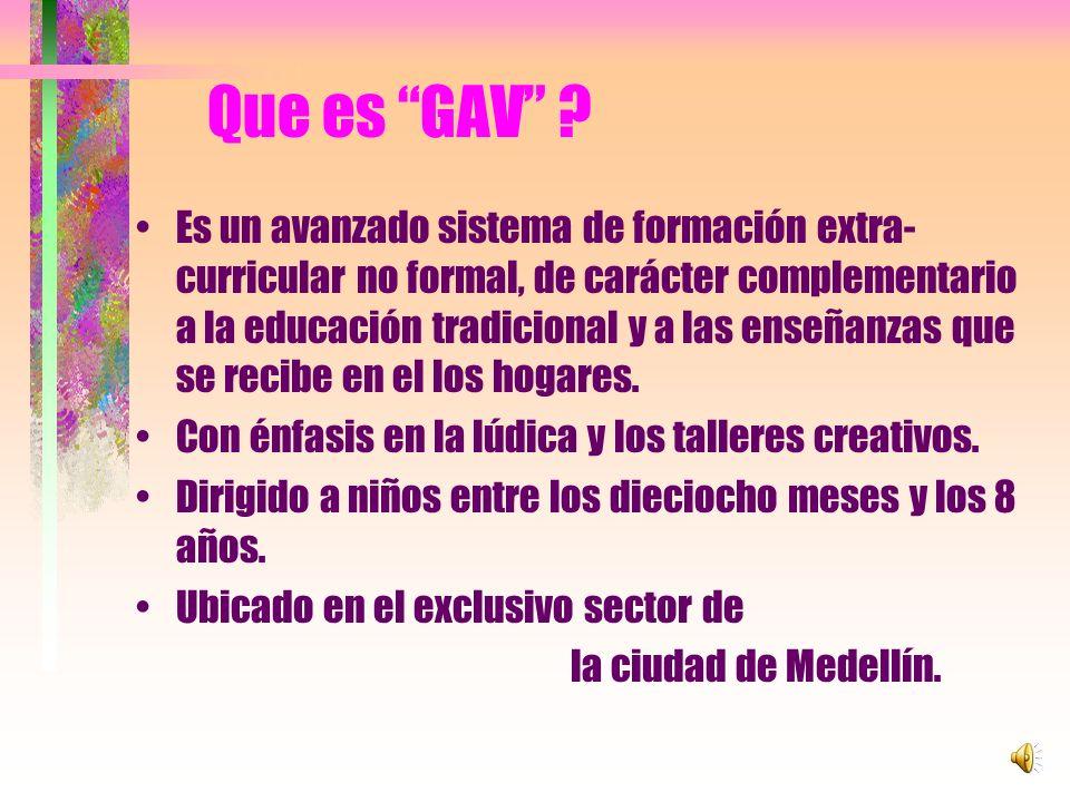 Que es GAV
