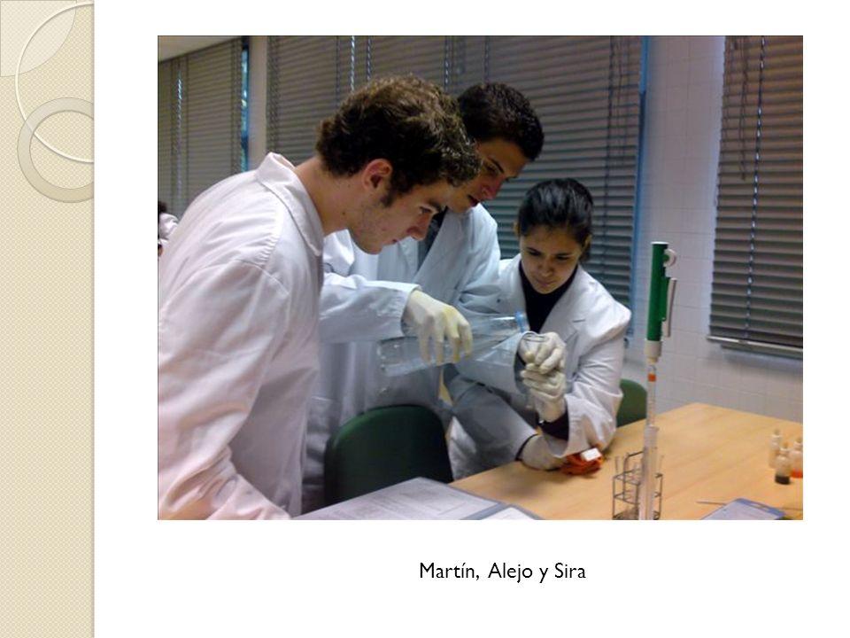 Martín, Alejo y Sira