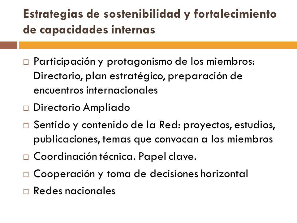 Estrategias de sostenibilidad y fortalecimiento de capacidades internas