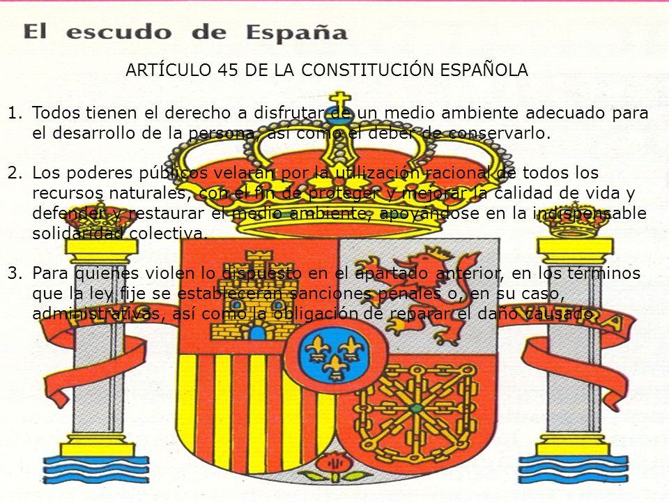 ARTÍCULO 45 DE LA CONSTITUCIÓN ESPAÑOLA