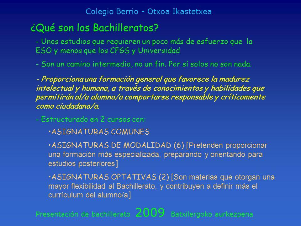 Colegio Berrio - Otxoa Ikastetxea
