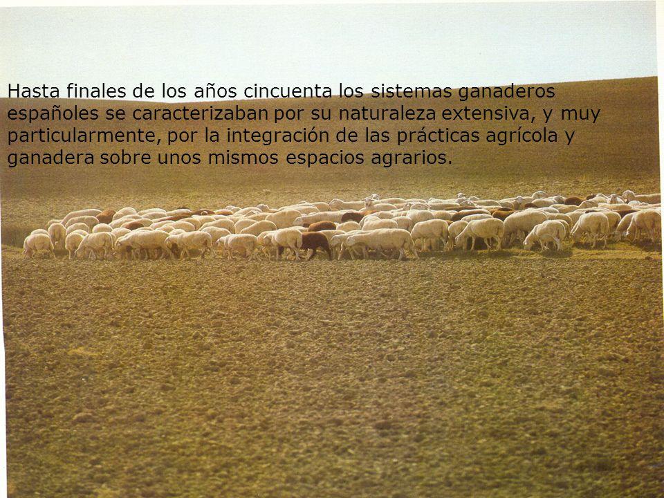 Hasta finales de los años cincuenta los sistemas ganaderos españoles se caracterizaban por su naturaleza extensiva, y muy particularmente, por la integración de las prácticas agrícola y ganadera sobre unos mismos espacios agrarios.