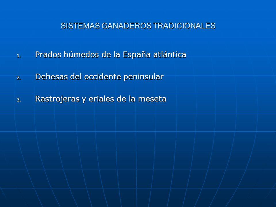SISTEMAS GANADEROS TRADICIONALES