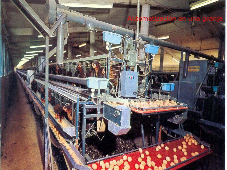 Automatización en una granja