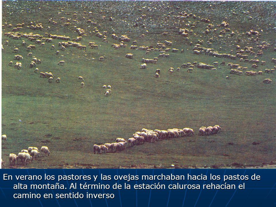 En verano los pastores y las ovejas marchaban hacia los pastos de alta montaña.