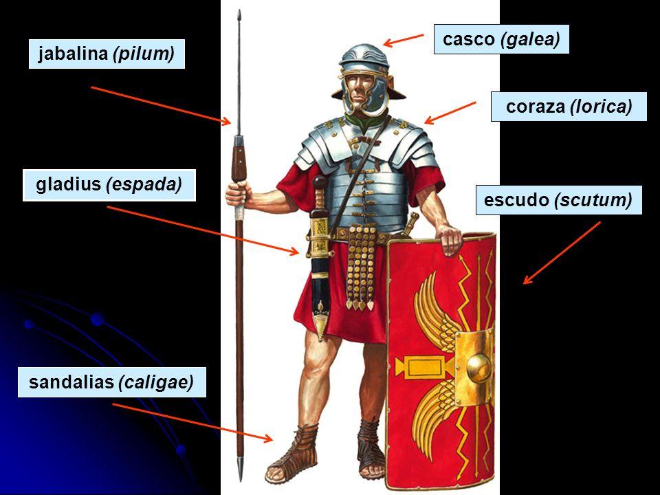 casco (galea) jabalina (pilum) coraza (lorica) gladius (espada)