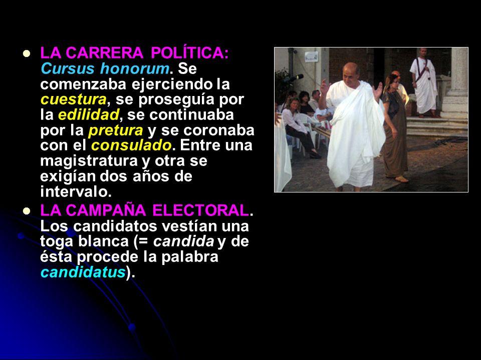 LA CARRERA POLÍTICA: Cursus honorum