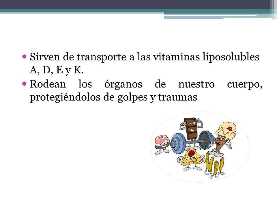 Sirven de transporte a las vitaminas liposolubles A, D, E y K.