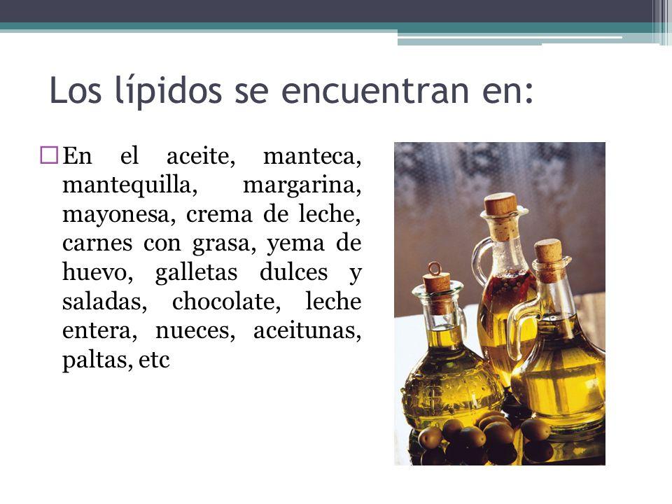 Los lípidos se encuentran en: