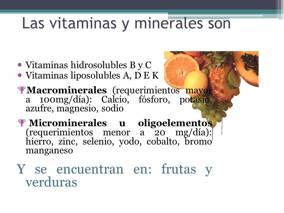 Las vitaminas y minerales son