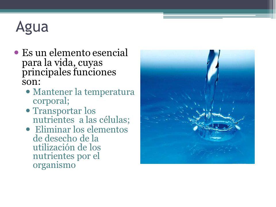 Agua Es un elemento esencial para la vida, cuyas principales funciones son: Mantener la temperatura corporal;