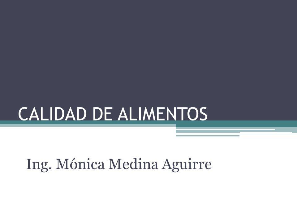 Ing. Mónica Medina Aguirre