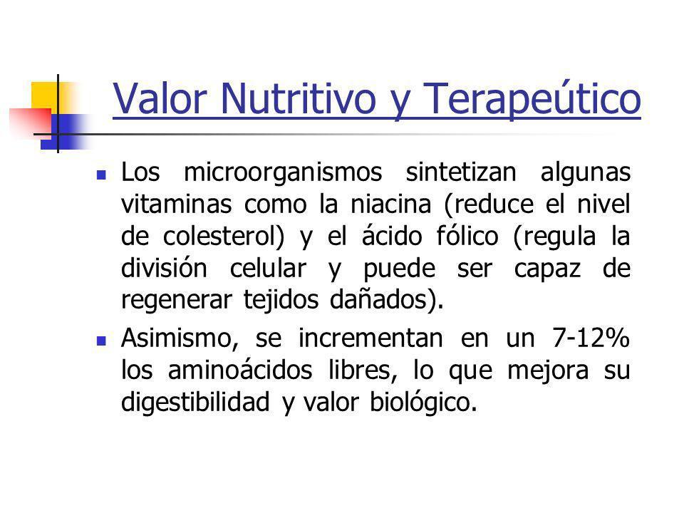 Valor Nutritivo y Terapeútico