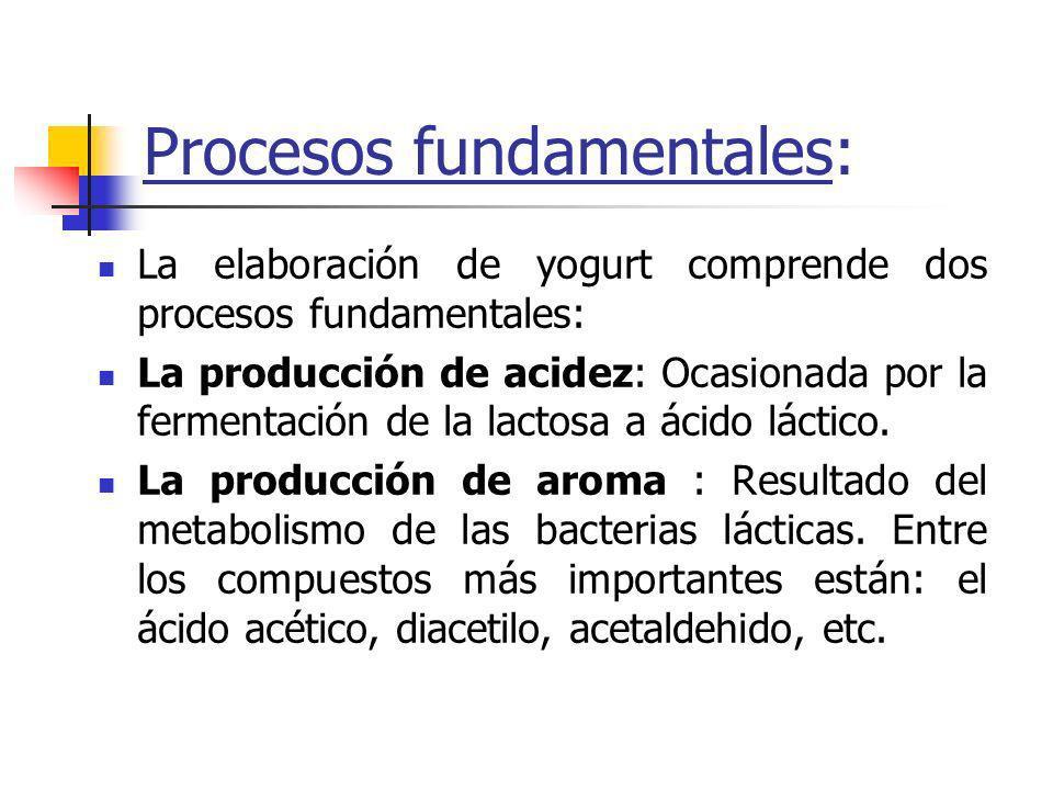 Procesos fundamentales: