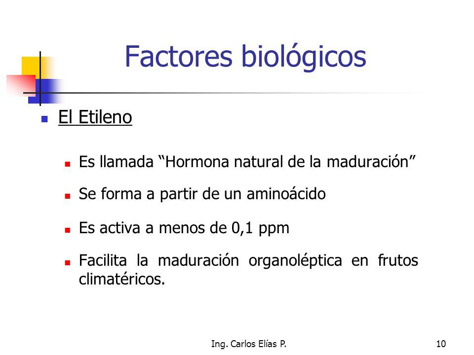 Factores biológicos El Etileno