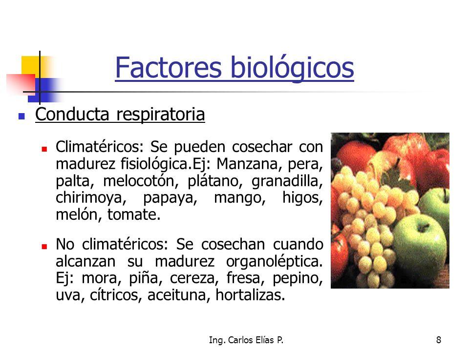 Factores biológicos Conducta respiratoria