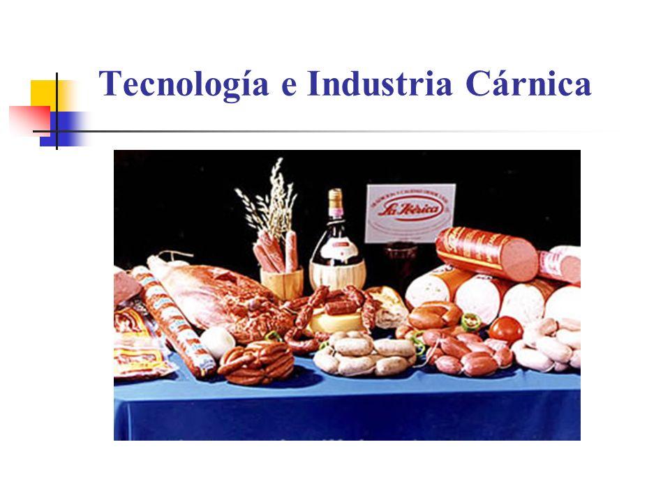 Tecnología e Industria Cárnica