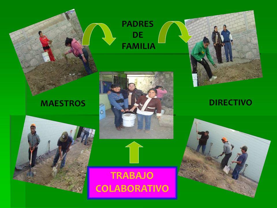 PADRES DE FAMILIA MAESTROS DIRECTIVO TRABAJO COLABORATIVO