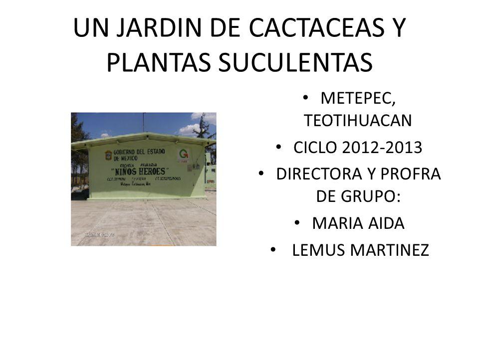 UN JARDIN DE CACTACEAS Y PLANTAS SUCULENTAS