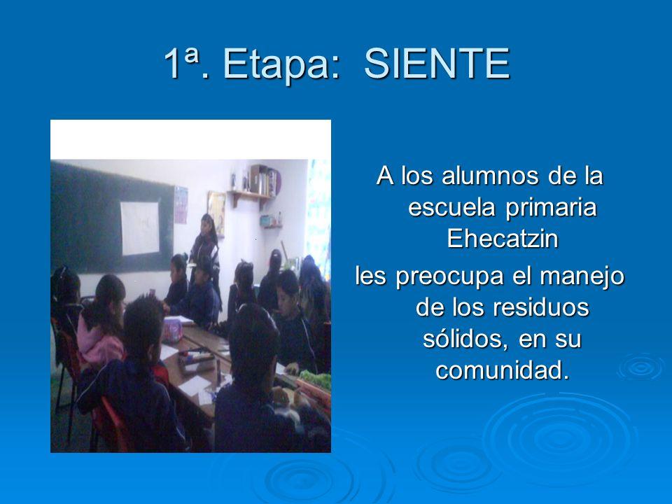 1ª. Etapa: SIENTE A los alumnos de la escuela primaria Ehecatzin