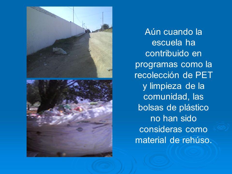 Aún cuando la escuela ha contribuido en programas como la recolección de PET y limpieza de la comunidad, las bolsas de plástico no han sido consideras como material de rehúso.
