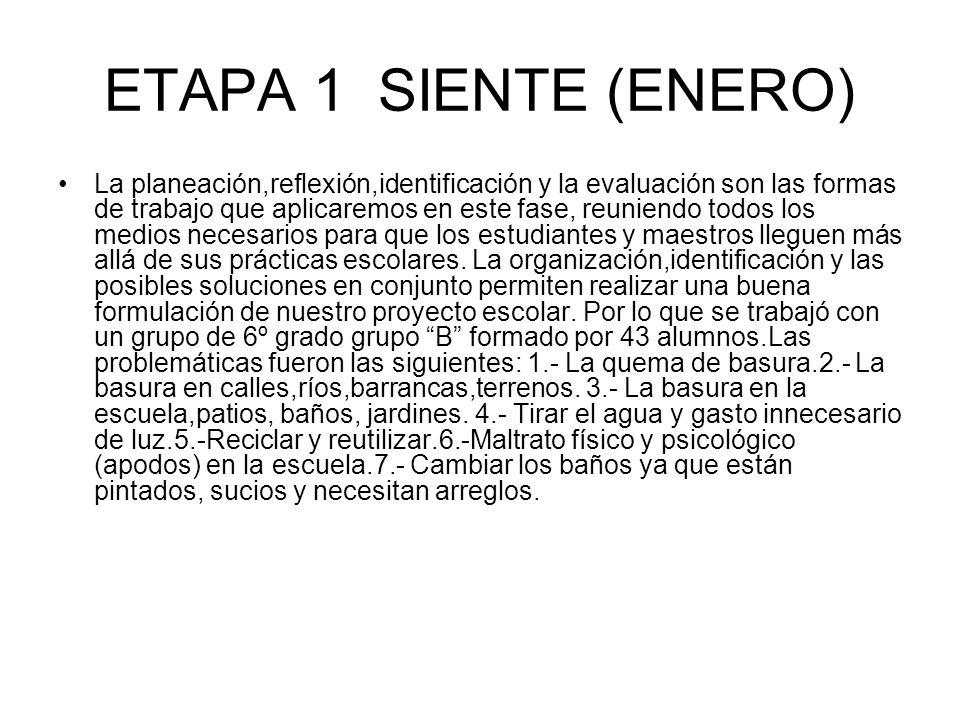 ETAPA 1 SIENTE (ENERO)