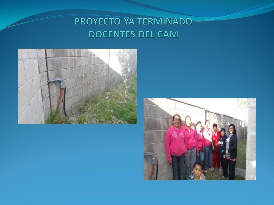 PROYECTO YA TERMINADO DOCENTES DEL CAM