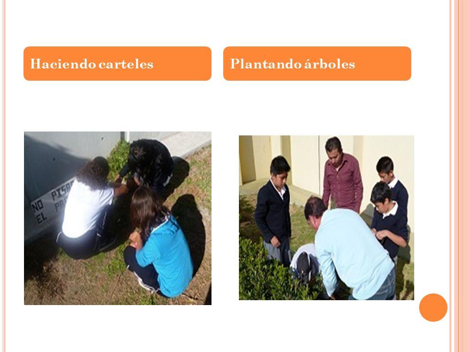 Haciendo carteles Plantando árboles