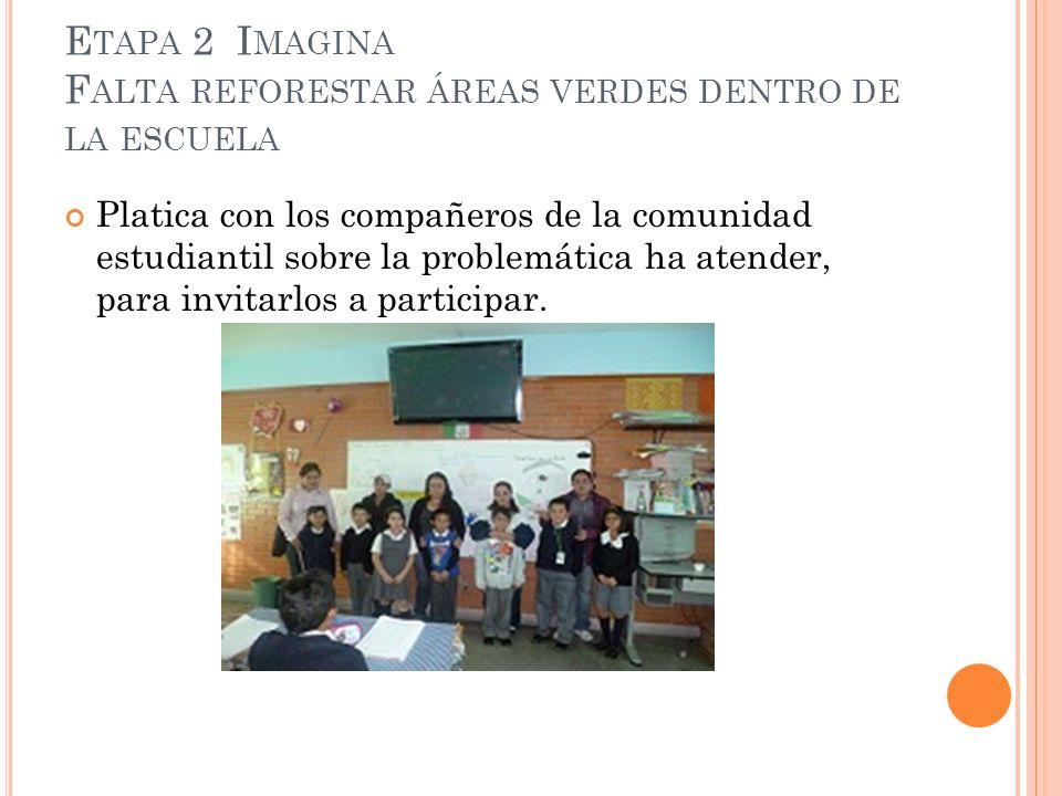 Etapa 2 Imagina Falta reforestar áreas verdes dentro de la escuela