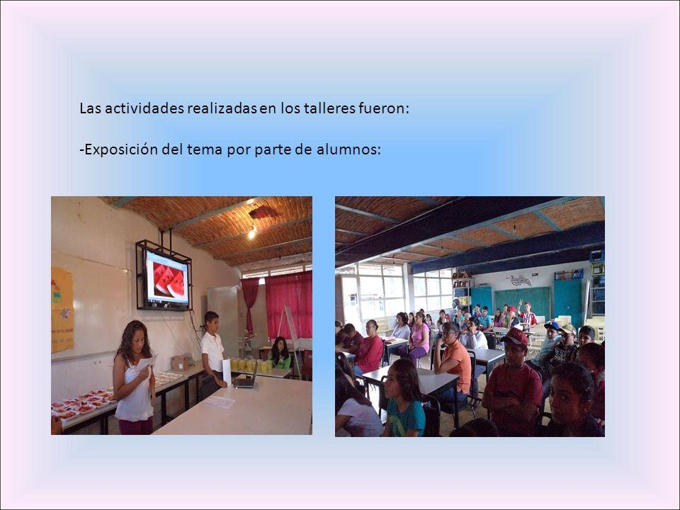 Las actividades realizadas en los talleres fueron: