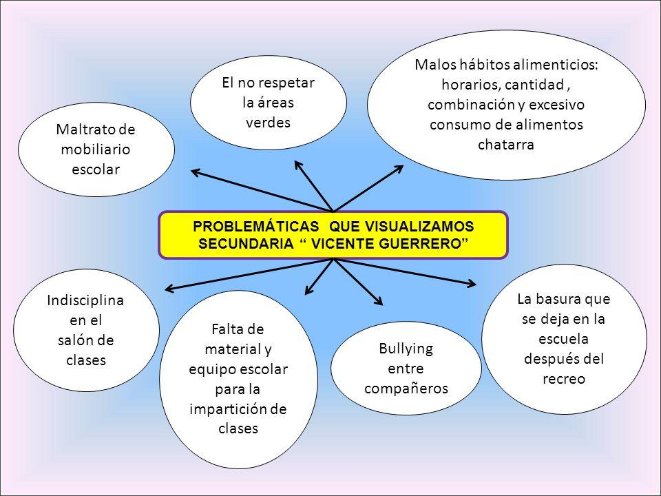 PROBLEMÁTICAS QUE VISUALIZAMOS SECUNDARIA VICENTE GUERRERO