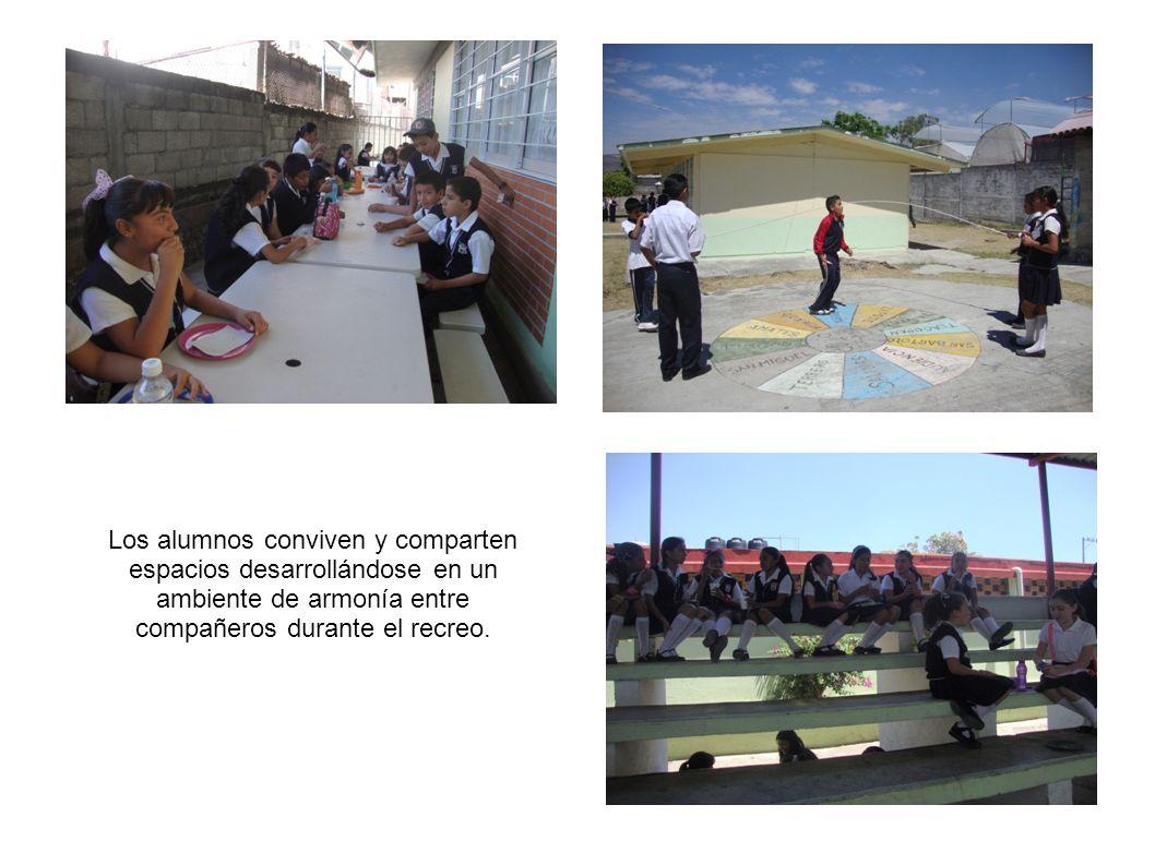 Los alumnos conviven y comparten espacios desarrollándose en un ambiente de armonía entre compañeros durante el recreo.