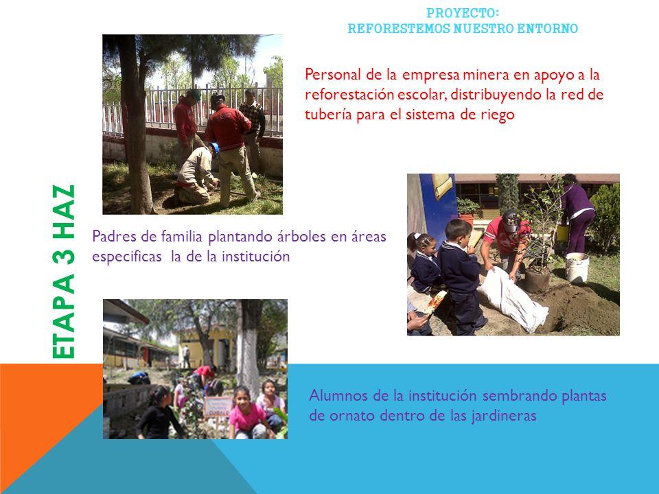 Personal de la empresa minera en apoyo a la reforestación escolar, distribuyendo la red de tubería para el sistema de riego