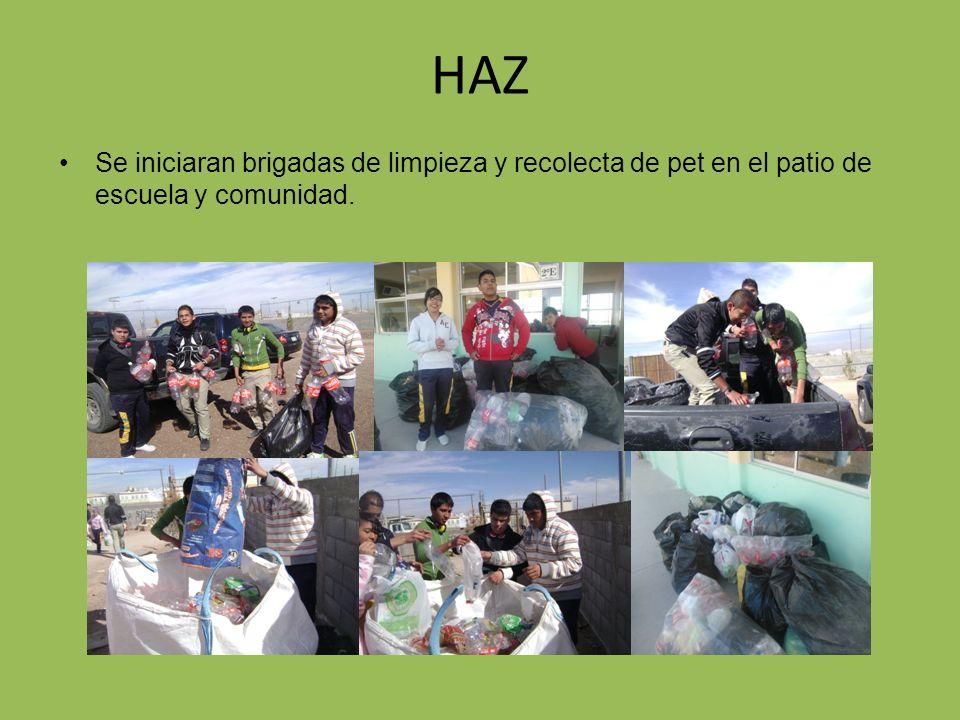 HAZ Se iniciaran brigadas de limpieza y recolecta de pet en el patio de escuela y comunidad.