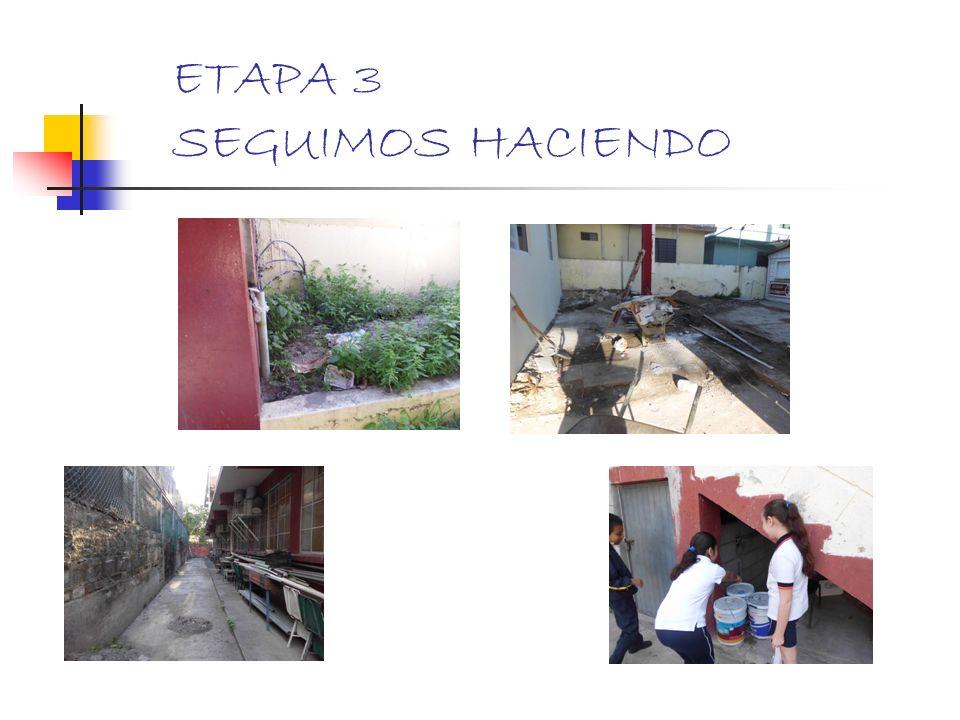 ETAPA 3 SEGUIMOS HACIENDO